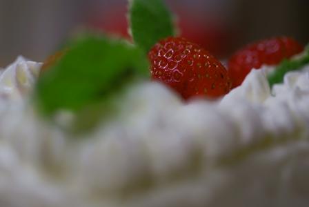 畑で採れたたっぷりのフレッシュ苺の手作りケーキ