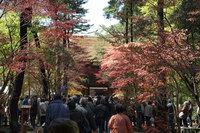 平林寺境内への門