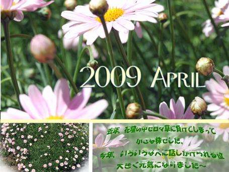 blog0616.png