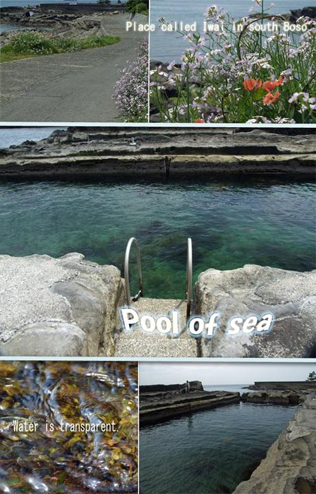 """南房総の岩井海岸という場所に、珍しい海のプールを見つけました。これぞまさしく""""天然""""ですねっ"""