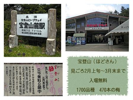 宝登山とは縁起の良い名前です^^山頂まで連れて行ってくれるロープウェイの駅の紹介写真です。ロープウェイは往復720円でした。
