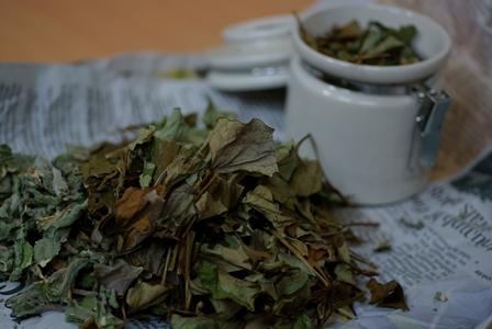 乾燥ドクダミと乾燥パイナップルミントの葉で作った天然化粧水