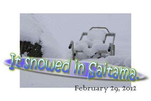 2012年埼玉雪