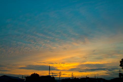 撮り損なった金環日食の日の夕方