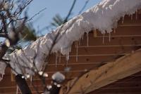 物置小屋の屋根の雪.png