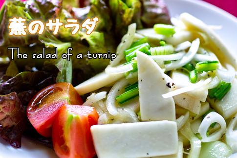 蕪のサラダ