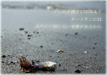 耳を澄ましてみよう 【浜辺の写真】