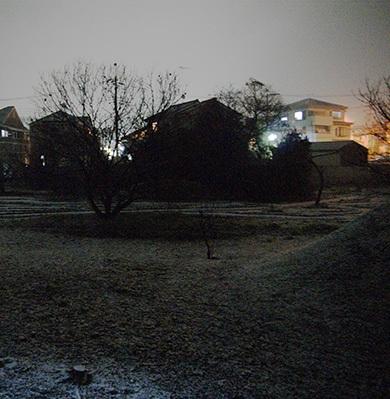 3月3日にうっすら積もる雪が降りました。
